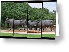 Bull Market Quadriptych Greeting Card by Christine Till
