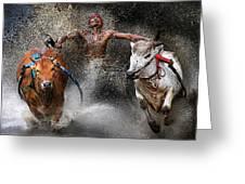 Bull Race Greeting Card by Wei Seng Chen