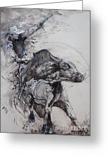 Bull Rider Greeting Card by Bob Graham
