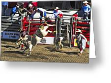 Bull Riding Greeting Card by Ron Roberts