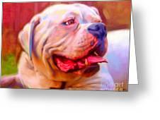 Bulldog Portrait Greeting Card by Iain McDonald