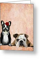 Bulldogs French And English Greeting Card by Kelly McLaughlan
