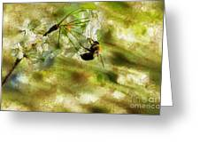 Bumble Bee Eating Sweet Nectar Greeting Card by Dan Friend