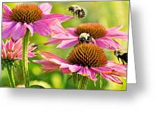 Bumbling Bees Greeting Card by Bill Pevlor