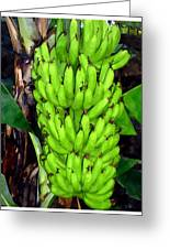 Bunch Of Bananas Greeting Card by Lanjee Chee