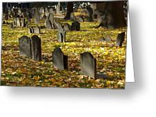 Buried In Boston Greeting Card by Bruce Carpenter