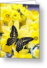 Butterfly Among The Daffodils Greeting Card by Edward Fielding