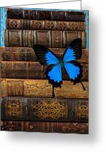 Butterfly And Old Books Greeting Card by Garry Gay