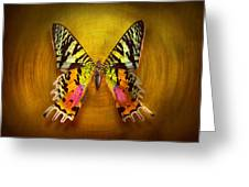 Butterfly - Butterfly Of Happiness Greeting Card by Mike Savad