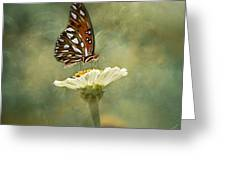 Butterfly Dreams Greeting Card by Kim Hojnacki