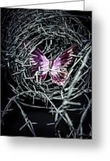 Butterfly Greeting Card by Joana Kruse