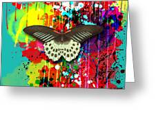 Butterfly Montage Greeting Card by Gary Grayson