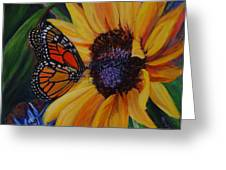 Butterfly On Sunflower Greeting Card by Diane Speirs