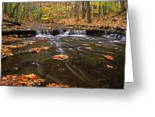 Buttermilk Falls Greeting Card by Dale Kincaid