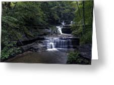 Buttermilk Waterfalls Greeting Card by David Simons