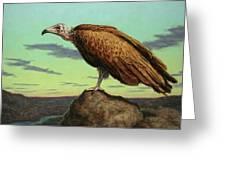 Buzzard Rock Greeting Card by James W Johnson