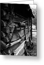 Cabin Wall II Greeting Card by Julie Dant