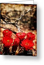 Cactus Flowers 2 Greeting Card by Julie Lueders