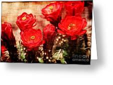 Cactus Flowers Greeting Card by Julie Lueders