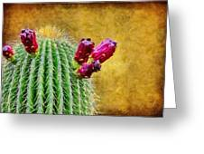 Cactus With Flowers Greeting Card by Jeff Kolker