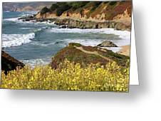 California Coast Overlook Greeting Card by Carol Groenen