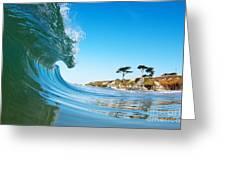 California Curl Greeting Card by Paul Topp