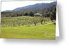 California Vineyards In Late Winter Just Before The Bloom 5d22073 Greeting Card by Wingsdomain Art and Photography