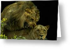 Call Of The Wild 2 Greeting Card by Ernie Echols