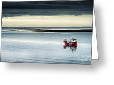 Calm Before The Storm  Greeting Card by Tim Gainey