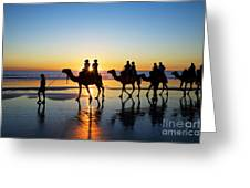 Camels on the Beach Broome Western Australia Greeting Card by Colin and Linda McKie