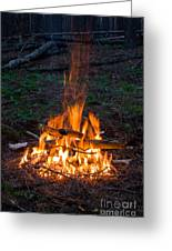 Camp Fire Greeting Card by Boon Mee