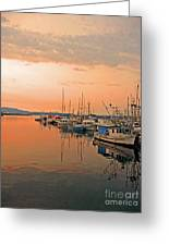 Campbell River Marina Greeting Card by Nancy Harrison