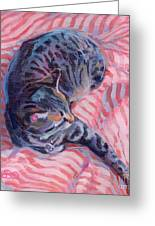 Candy Cane Greeting Card by Kimberly Santini