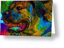 Cane Corso Pop Art Greeting Card by Eti Reid