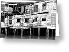 Cannery Greeting Card by Joe Klune