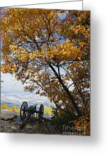 Cannon On Top Of Lookout Mountain Greeting Card by Bruce Roberts