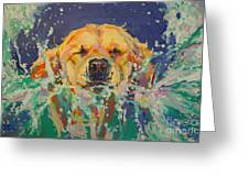 Cannonball Greeting Card by Kimberly Santini