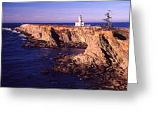 Cape Arrago Lighthouse Greeting Card by Joe Klune