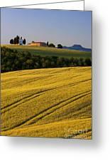 Cappelle Di Vitaleta Greeting Card by Brian Jannsen