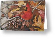 Cardinal Color Greeting Card by Cheryl Borchert