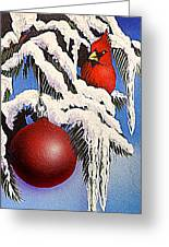 Cardinal One Ball Greeting Card by Darren Robinson