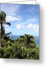Caribbean Cruise - St Thomas - 1212212 Greeting Card by DC Photographer