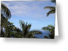Caribbean Cruise - St Thomas - 1212229 Greeting Card by DC Photographer