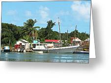 Caribbean - Docked Boats At Antigua Greeting Card by Susan Savad