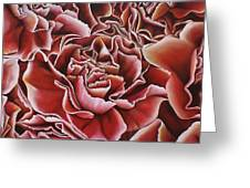 Carnations Greeting Card by Paula L