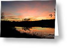 Carneros Reflection Greeting Card by Jordan Rusin