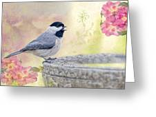 Carolina Chickadee In Camellia Garden Greeting Card by Bonnie Barry