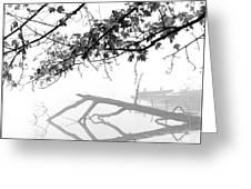 Carpenter Lake Morning Greeting Card by Wendell Thompson