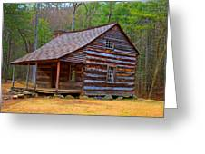 Carter Shields Cabin 2 Greeting Card by Wild Expressions Photography
