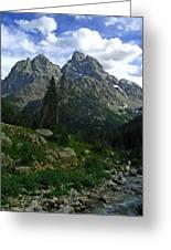 Cascade Creek The Grand Mount Owen Greeting Card by Raymond Salani III